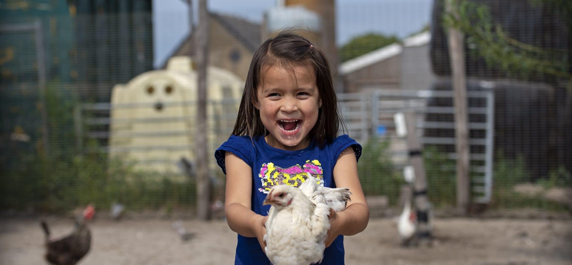 Kind met kip op Belevenisboerderij Schieveen