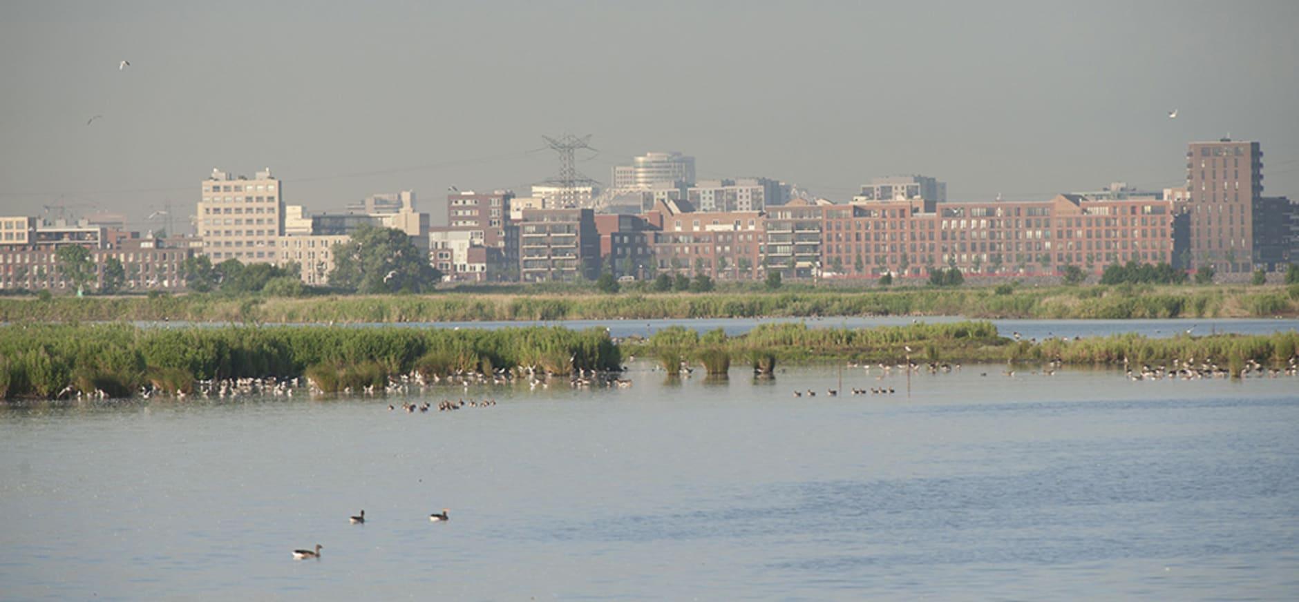 Bebouwing vanaf natuurgebied IJdoorn