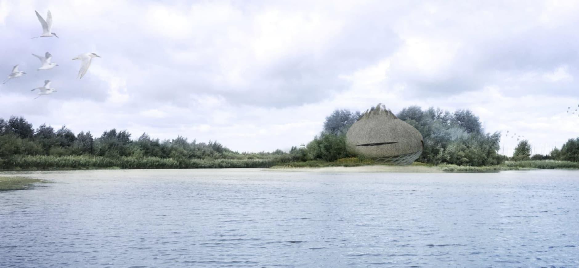 vogelobservatorium Scheelhoek