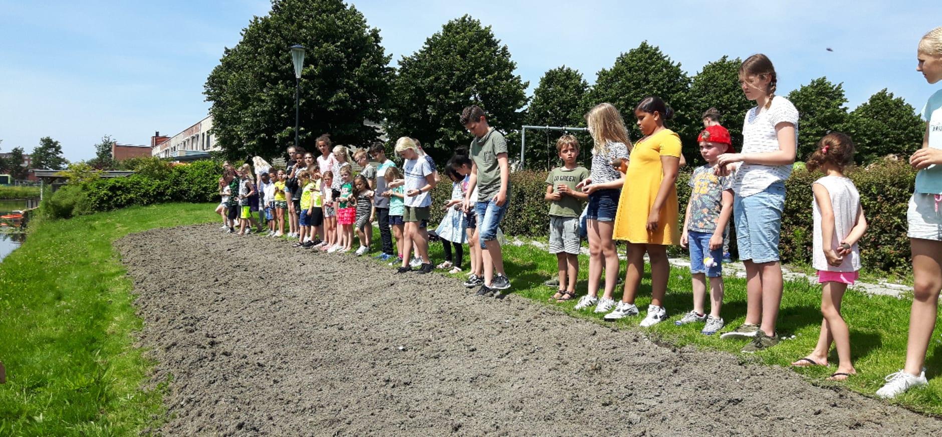 Basisschool De Vlindertuin maakt ruimte wilde bloemen