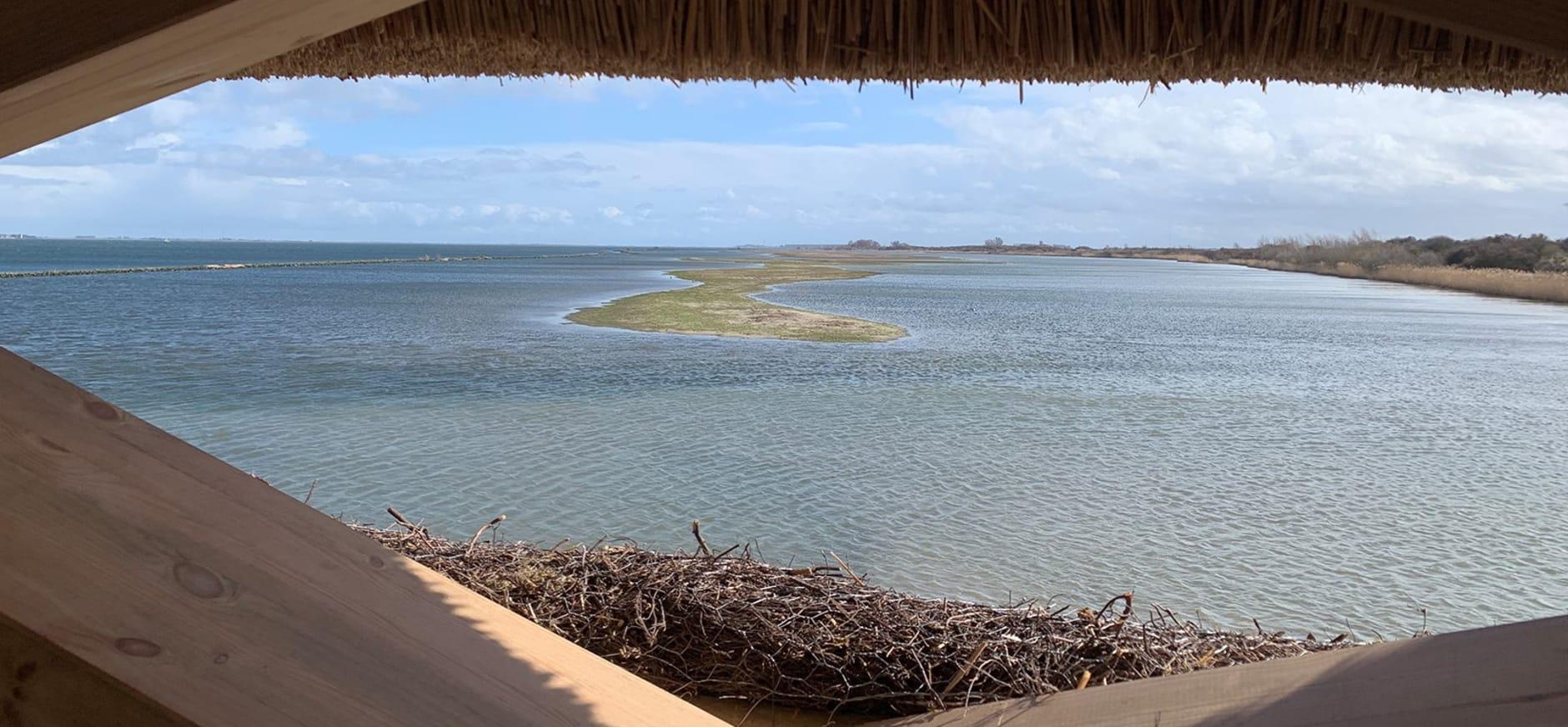 Vogelobservatorium uitzicht