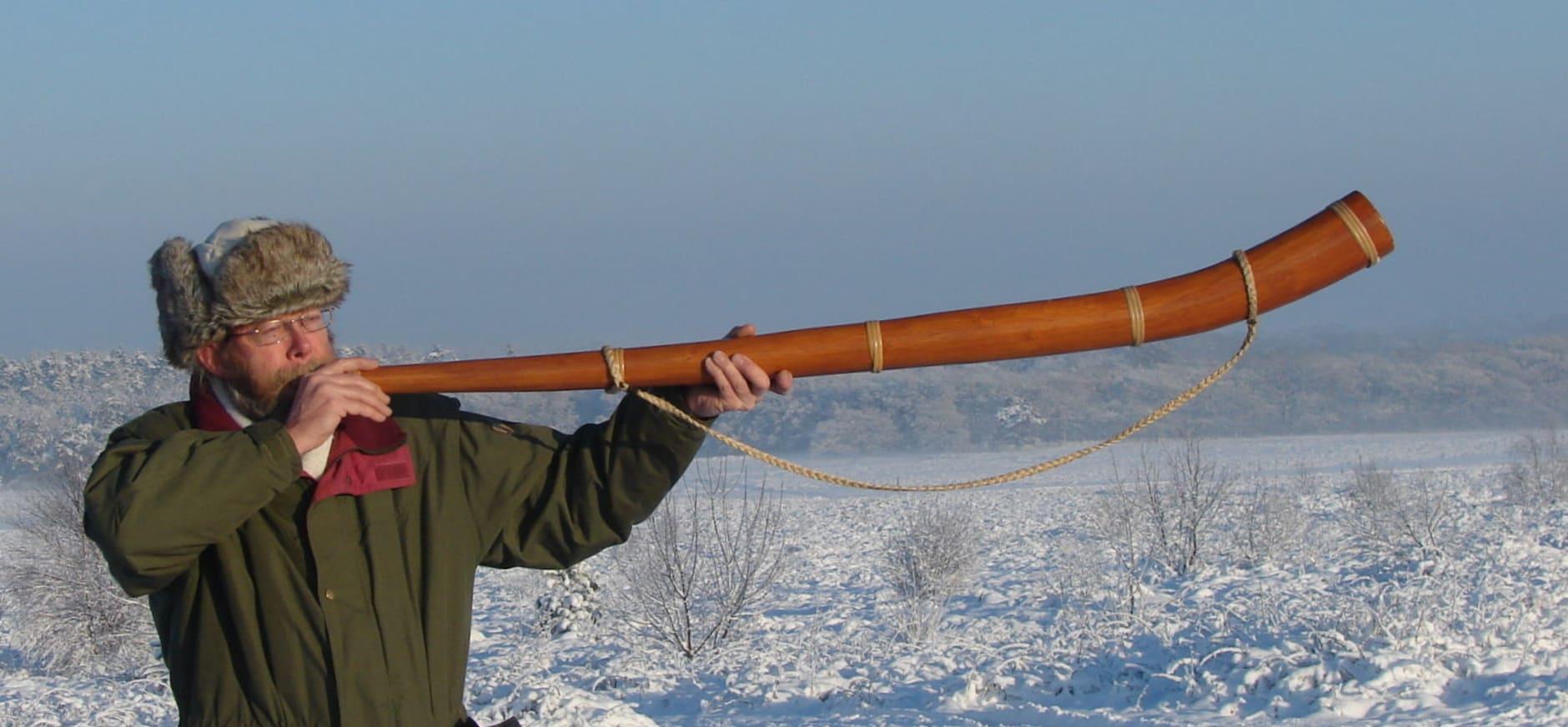 midwinterhoorn blazen;  foto Riette Koelewijn, Natuurmonumenten