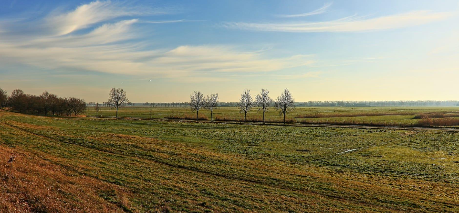 Voormalige productie graslanden Vlijmens Ven