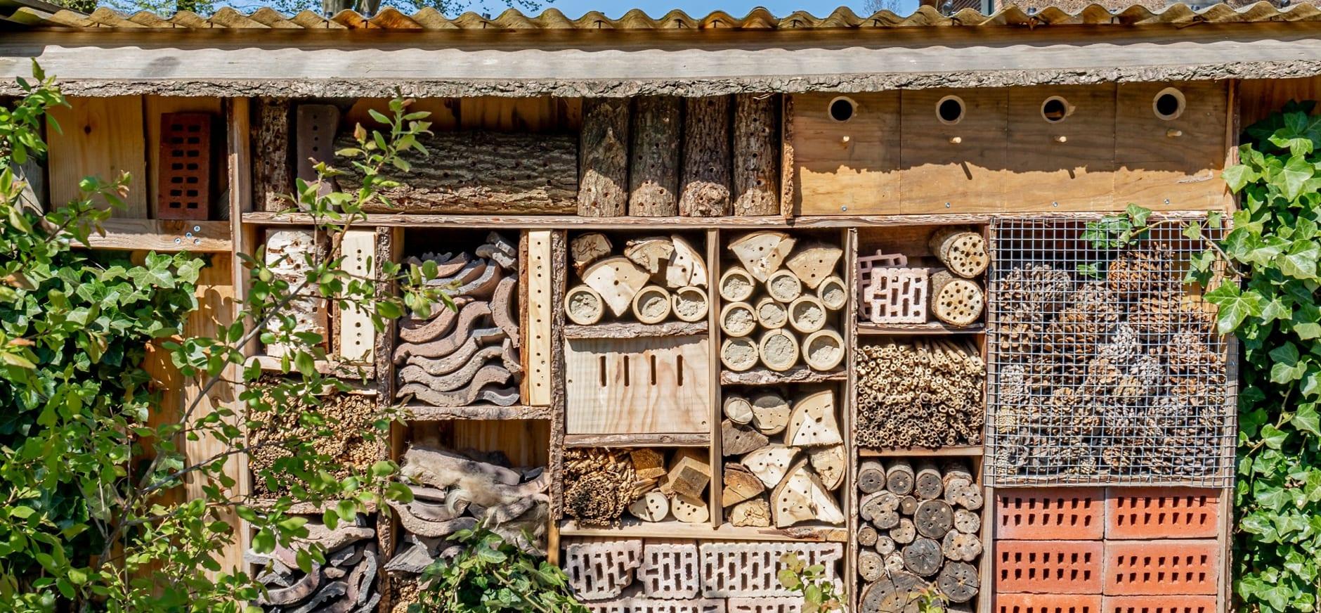 Insectenresort - Okko Vos