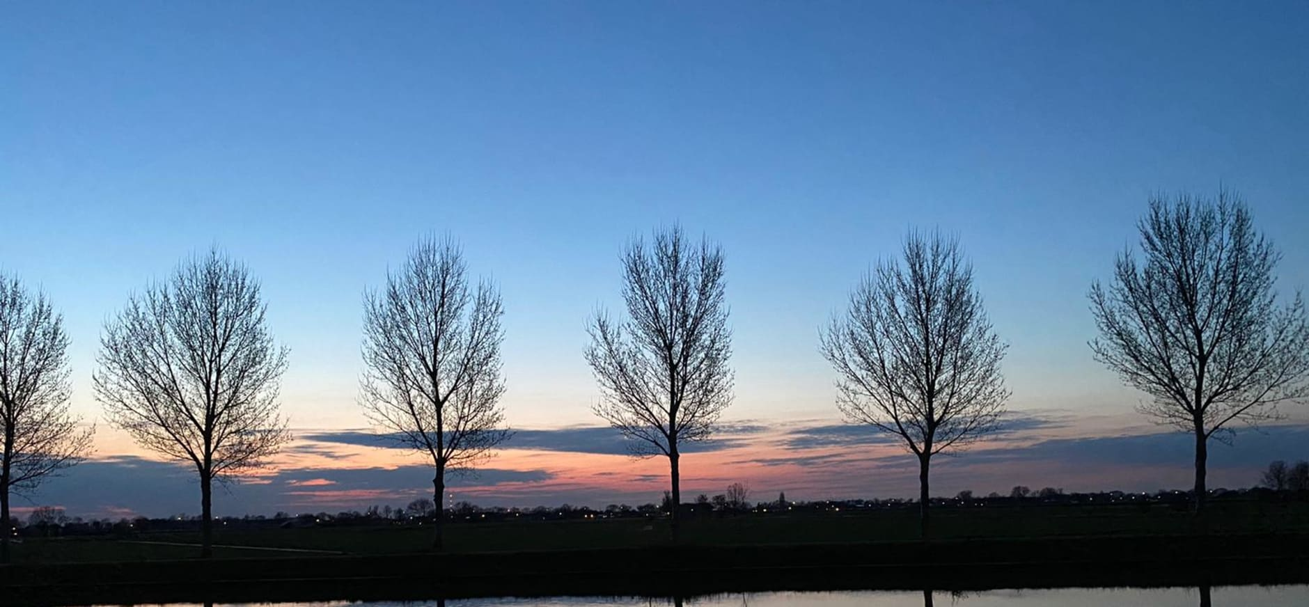 weerspiegeling van bomen in het water tijdens zonsondergang