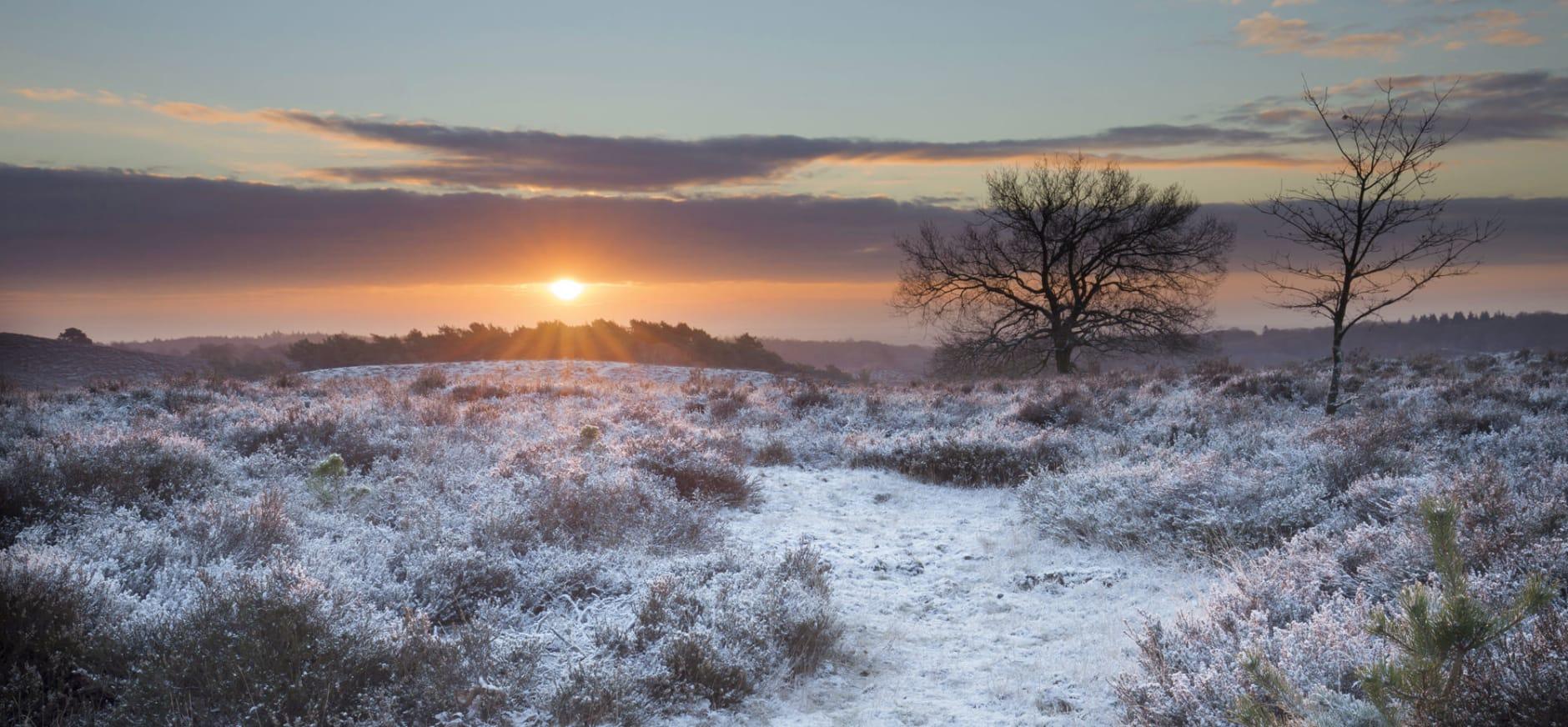 Winterwandeling in Nationaal Park Veluwezoom