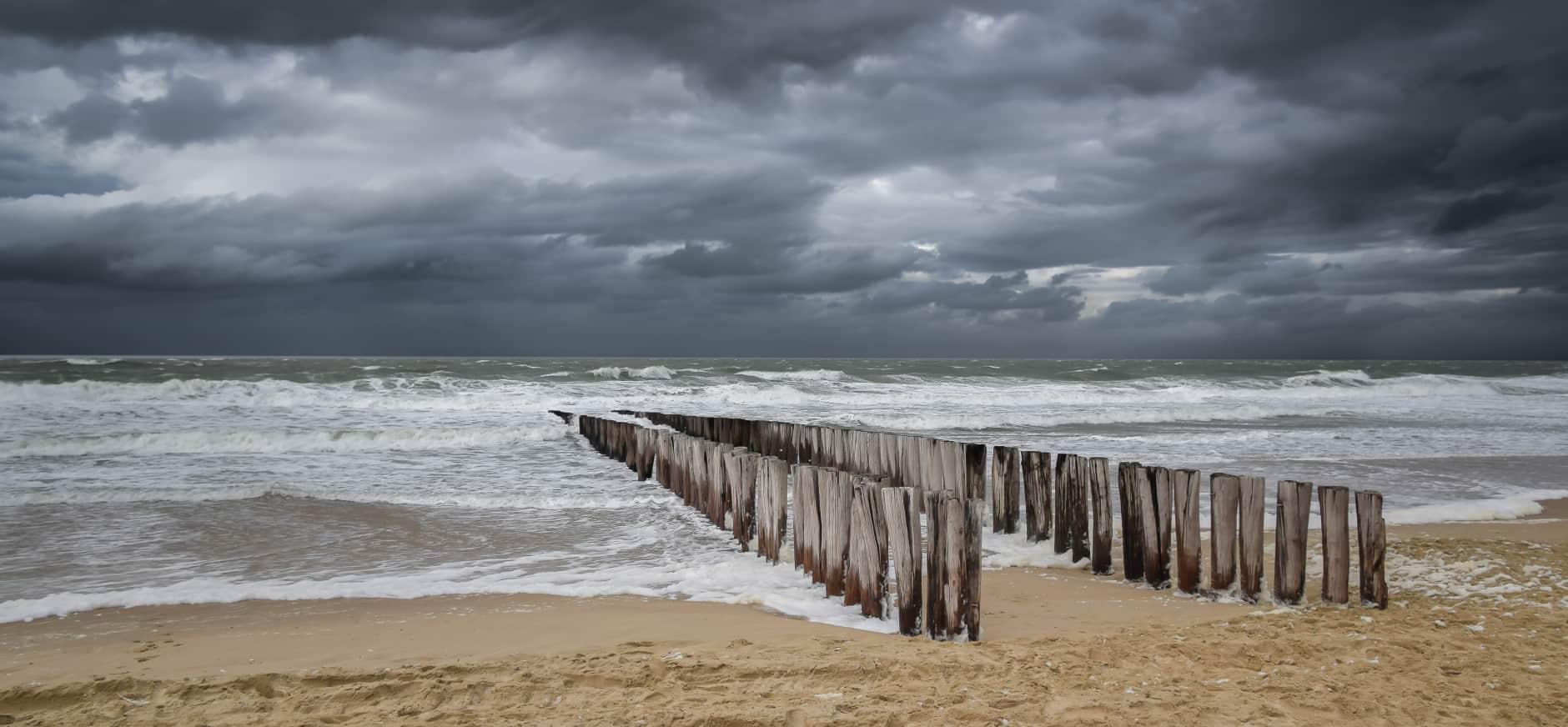 Schaars open landschap aan Zuid-Hollandse kust verdwijnt in rap tempo