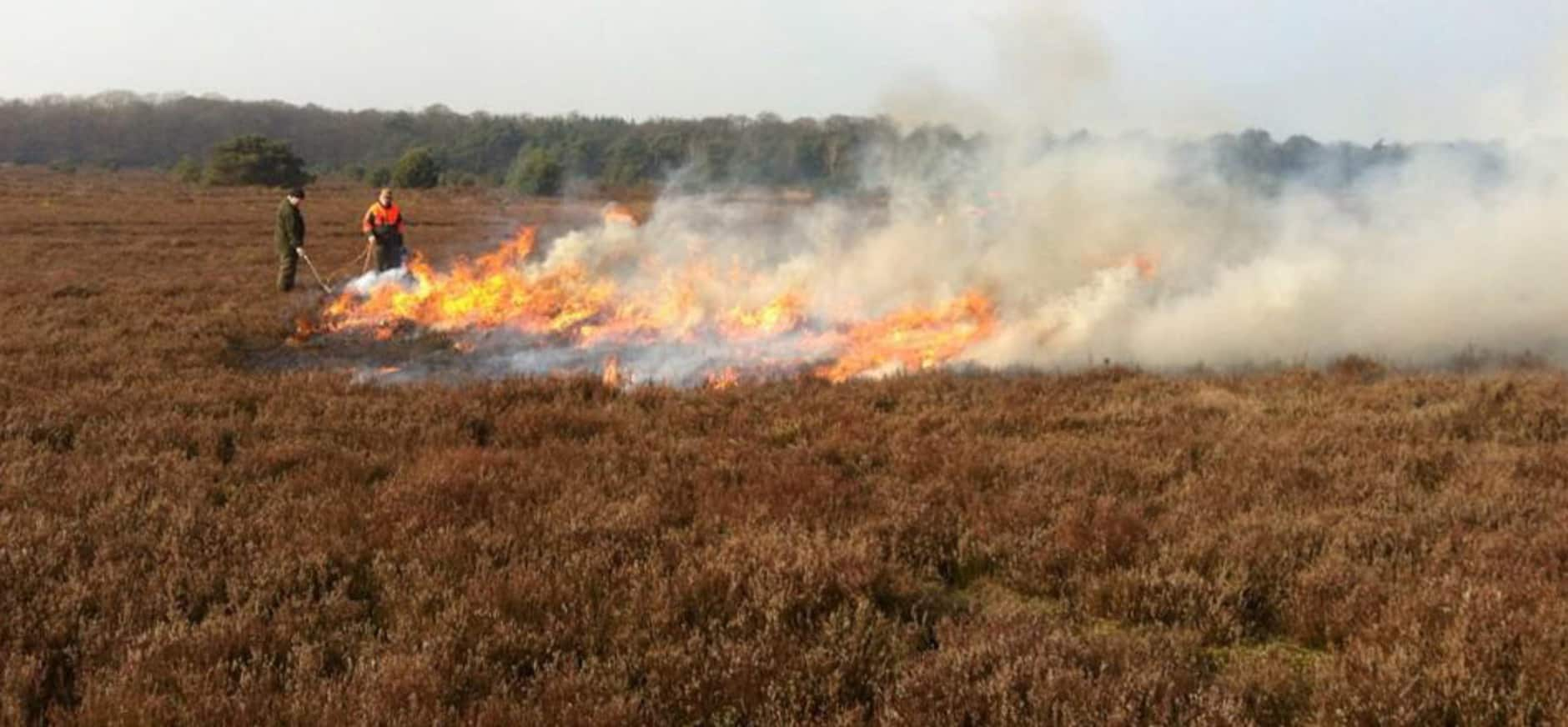 Branden voor heide op De Sallandse Heuvelrug