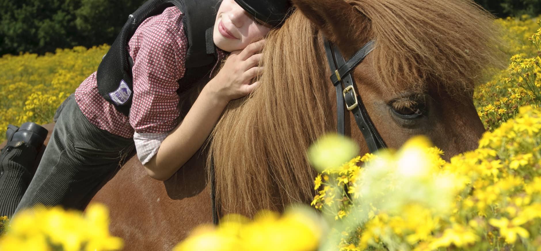 Nieuw: vergunningen MTB en paardrijden online verkrijgbaar