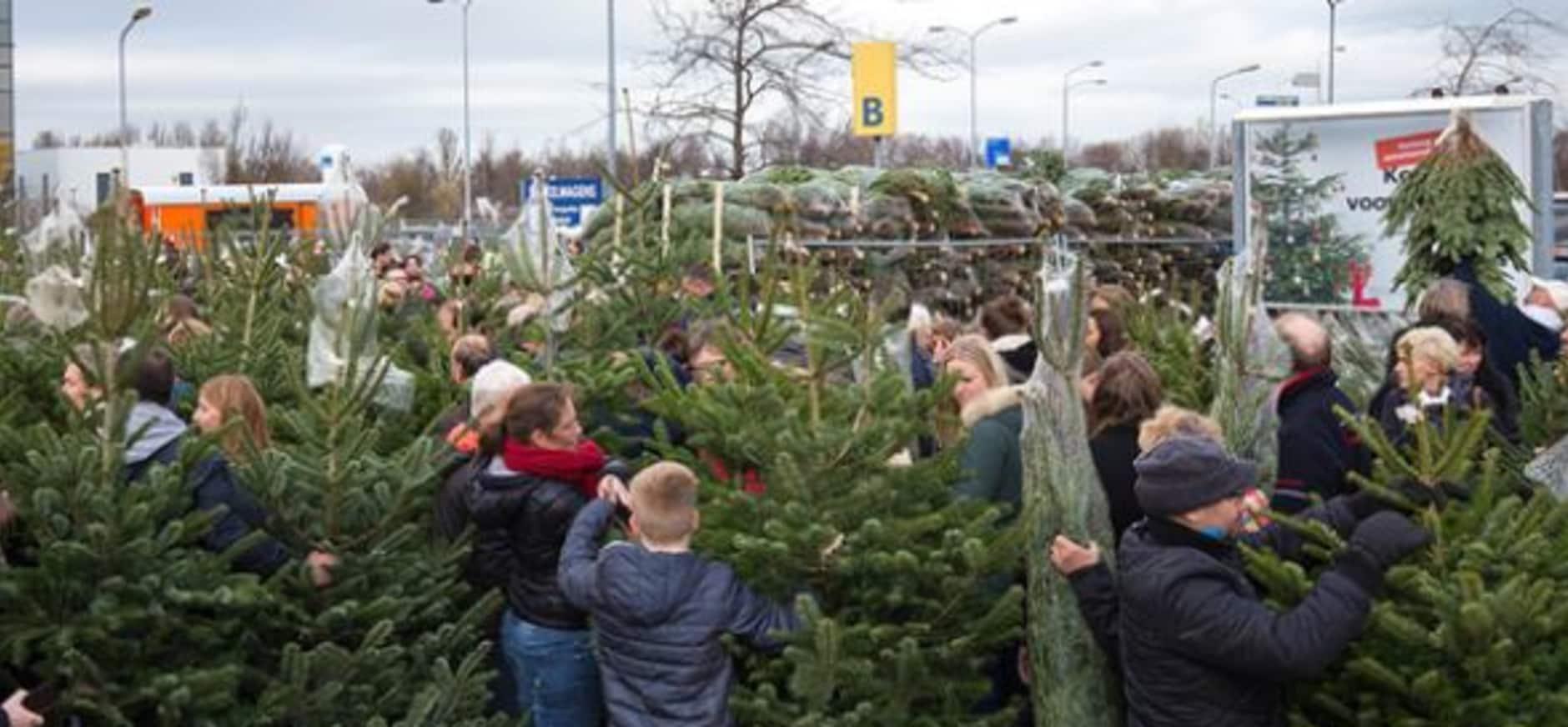 IKEA kerstbomenactie levert 85.474 euro voor natuur op
