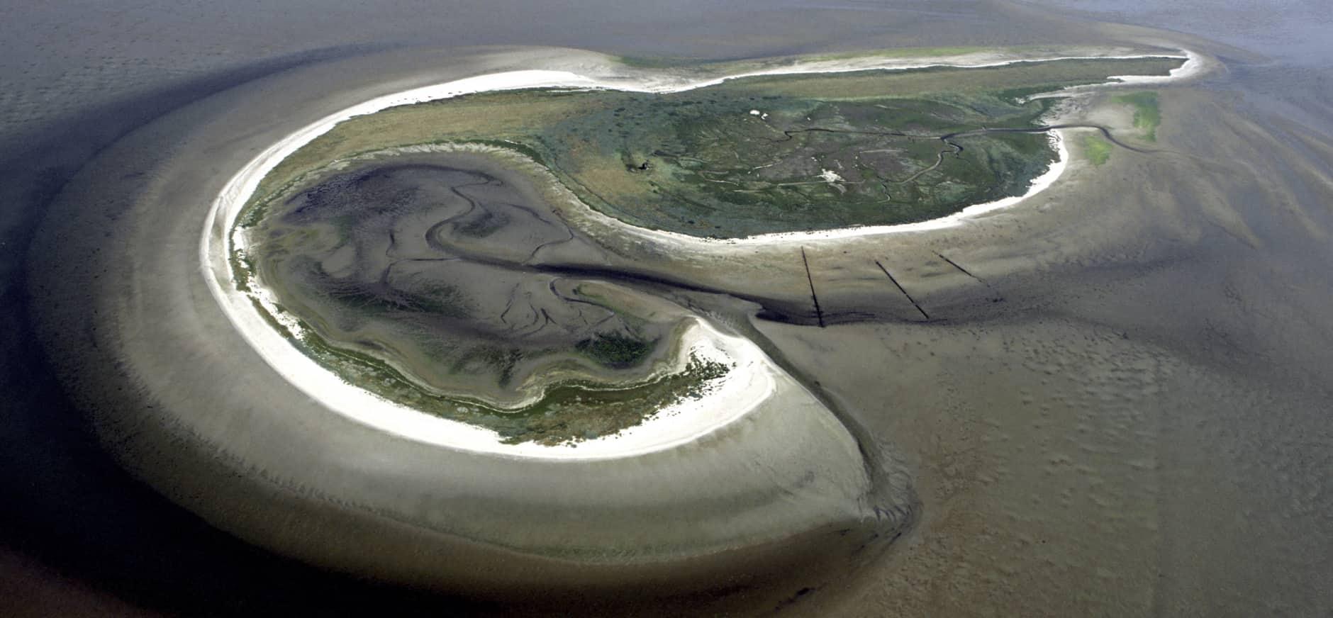Griend eerste Nederlandse natuurgebied in Google Street View