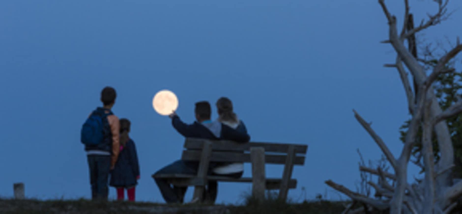 Weidse Midzomernacht op het Hulshorsterzand
