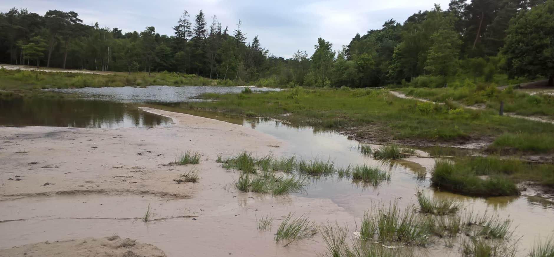 Drastische verandering rond de Roode Beek door regenval