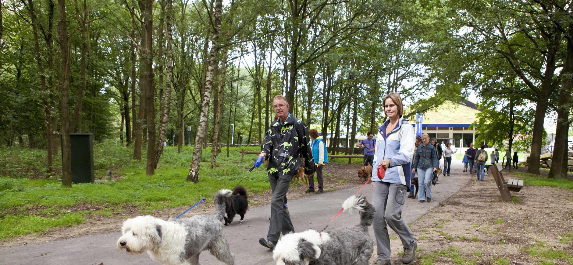 Begeleide hondenwandeling (Dag van de Hond)