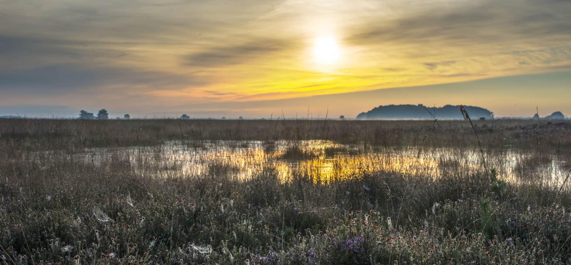 Associatieverdrag Oekraïne: wat is het effect op natuur?