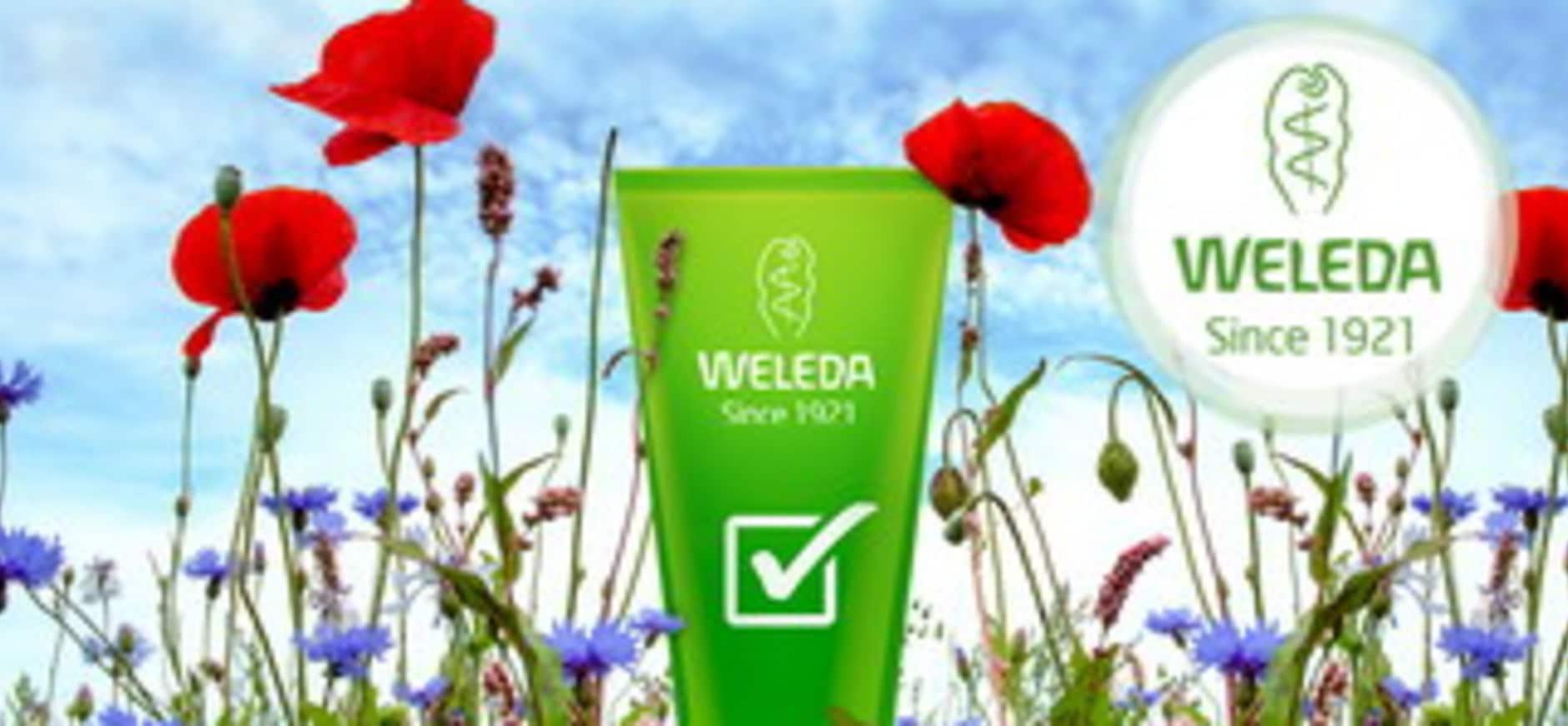 Weleda en Natuurmonumenten beschermen bloemrijke natuur