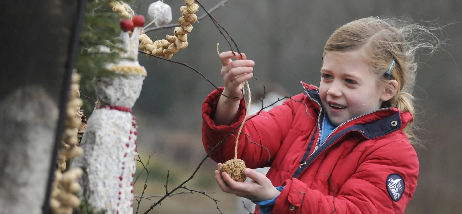 Braakballen pluizen en vogelsnacks maken tijdens de kerstvakantie