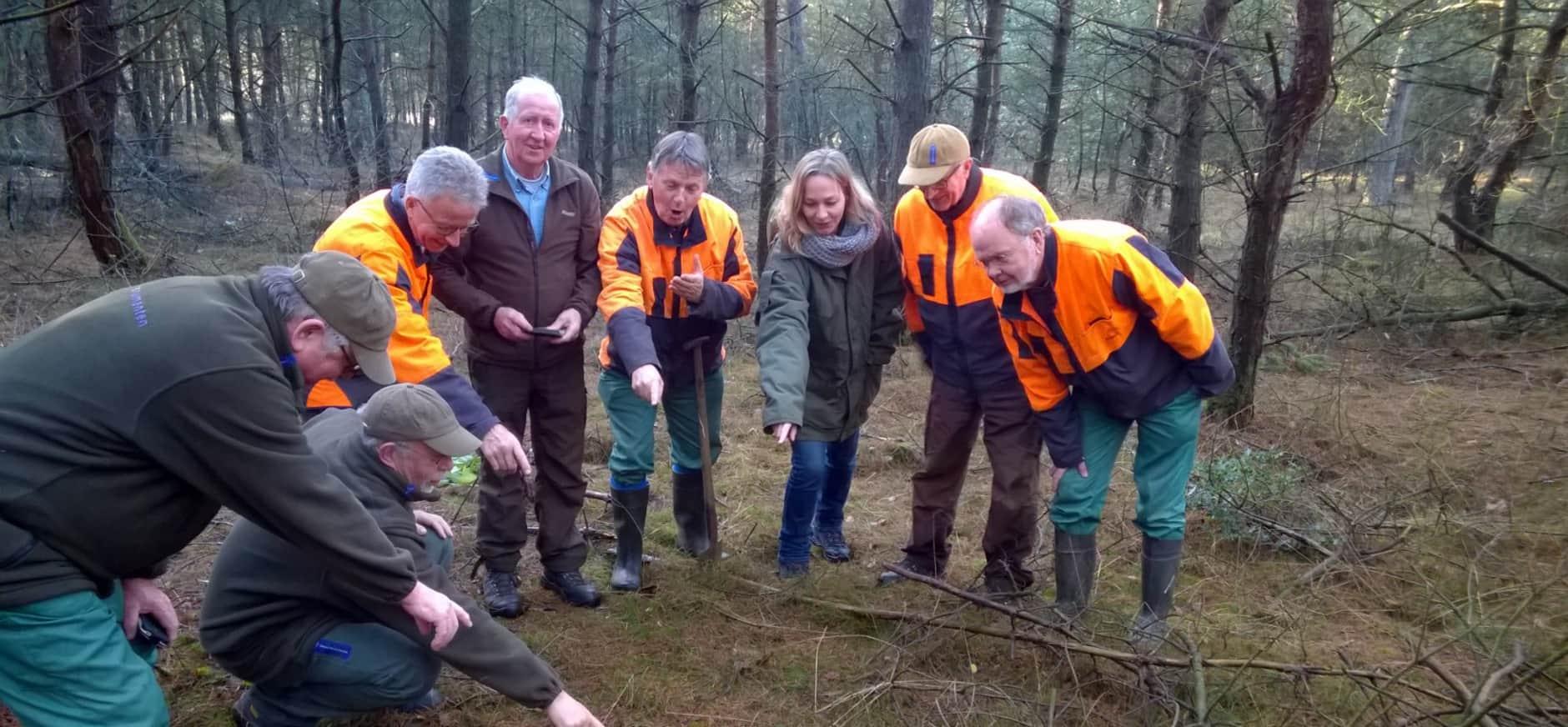 Vrijwilligers vinden orchidee op nieuwe plek Sallandse Heuvelrug