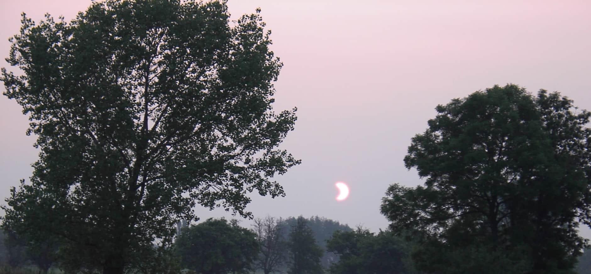 Beleef de zonsverduistering op de Nieuwkoopse Plassen