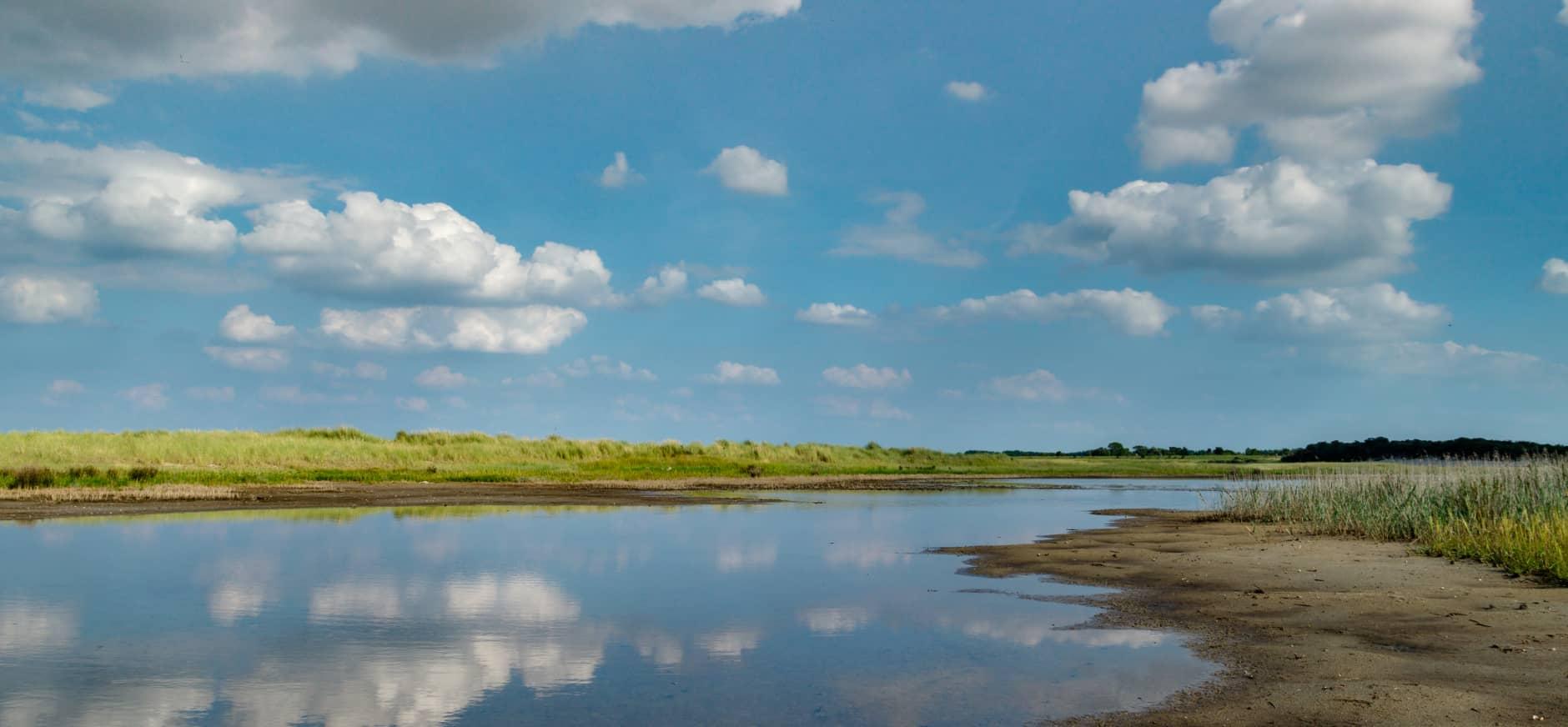 Natuurorganisaties willen betere bescherming Noordzee-kustlandschap Fryslân