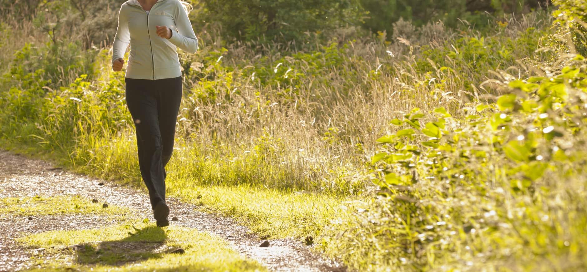 Blog van de boswachter: natuur is er voor iedereen