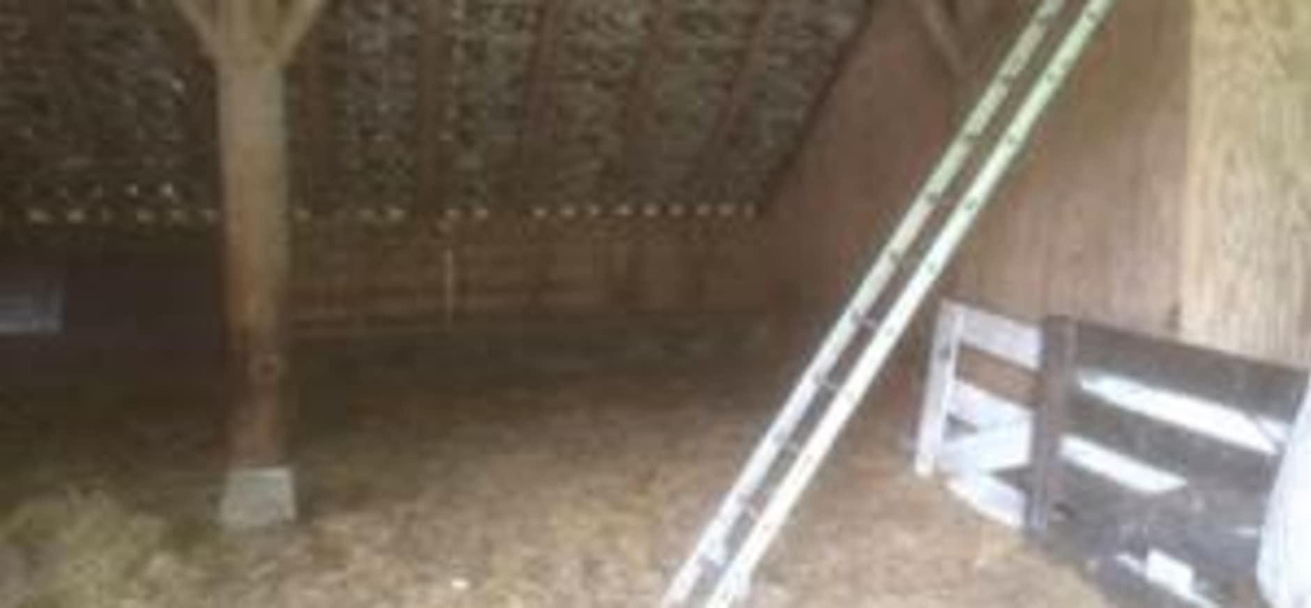 Verbouwing bij schaapskooi Lhee