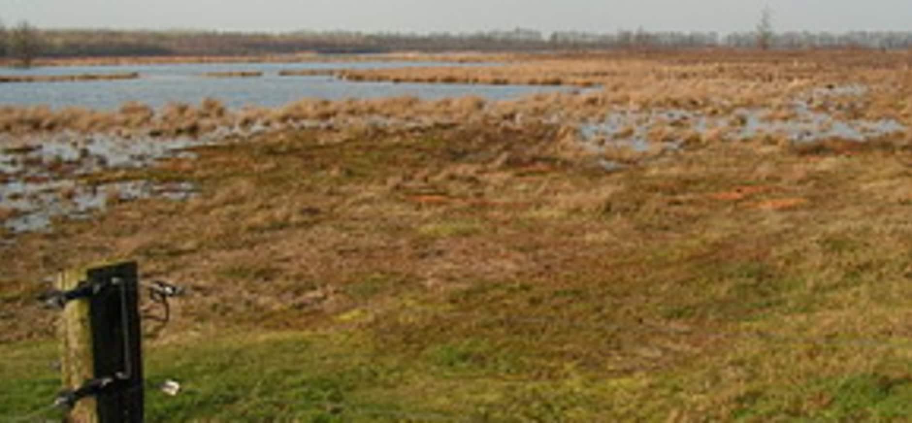 Aankoop gronden rondom het Mantingerveld