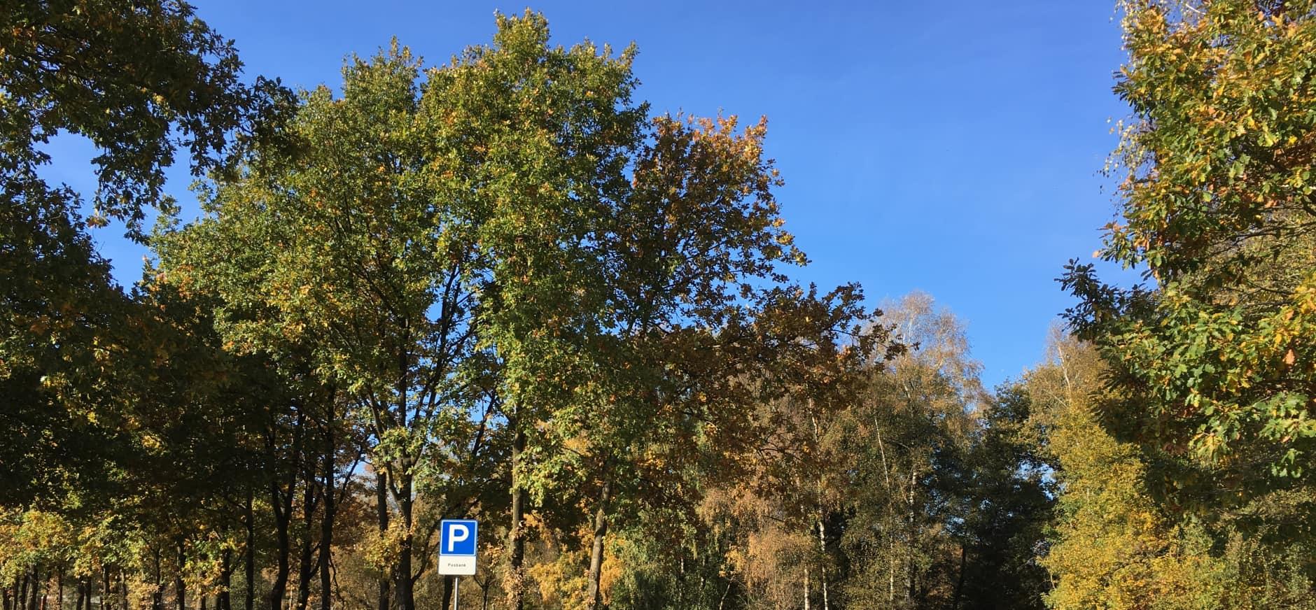 Werkzaamheden parkeerplaats Posbank Veluwezoom