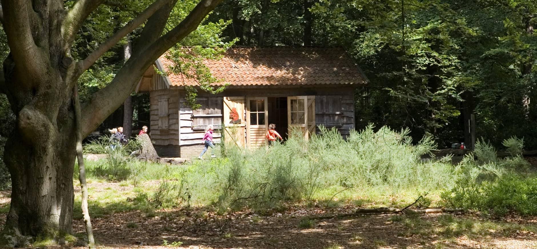 Grintenbosch