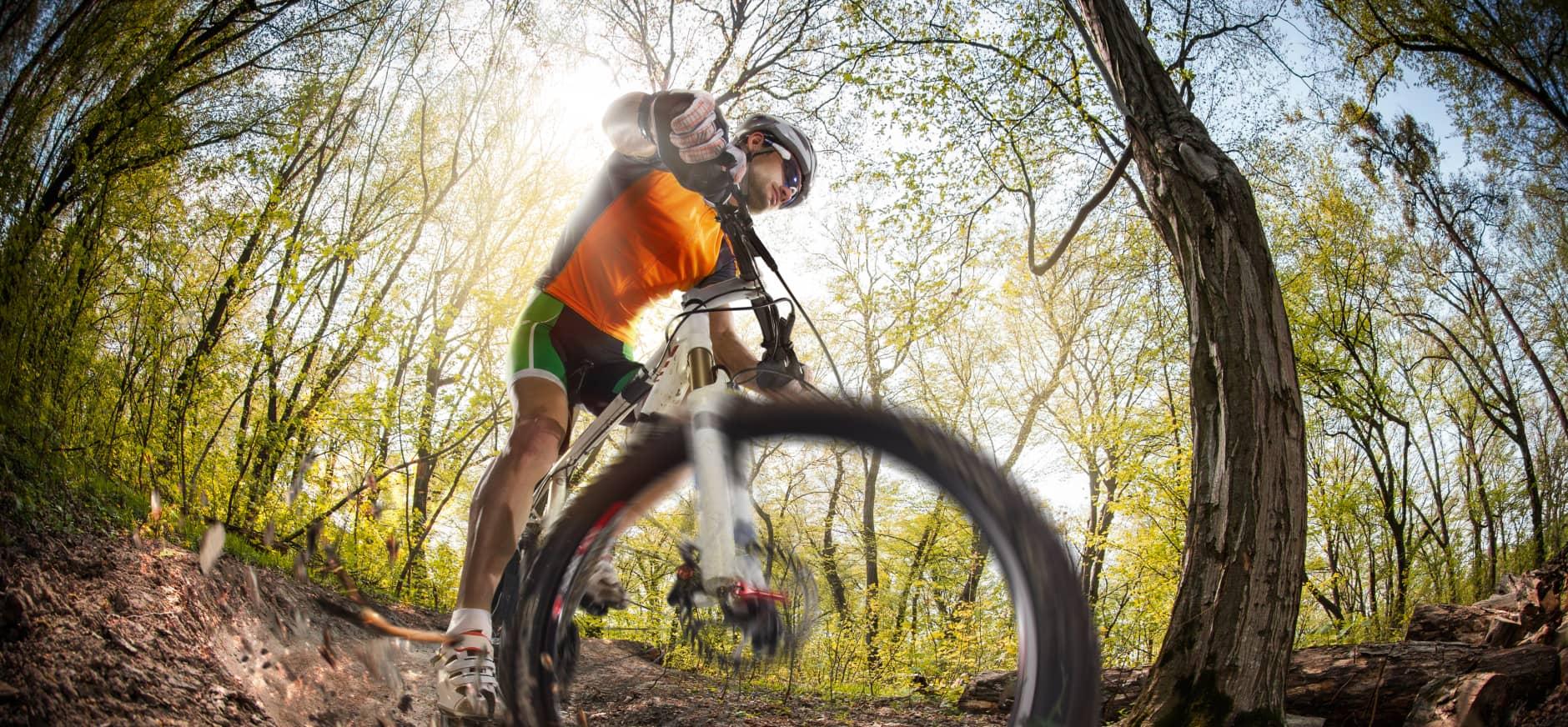 Mountainbiken Loonse en Drunense duinen