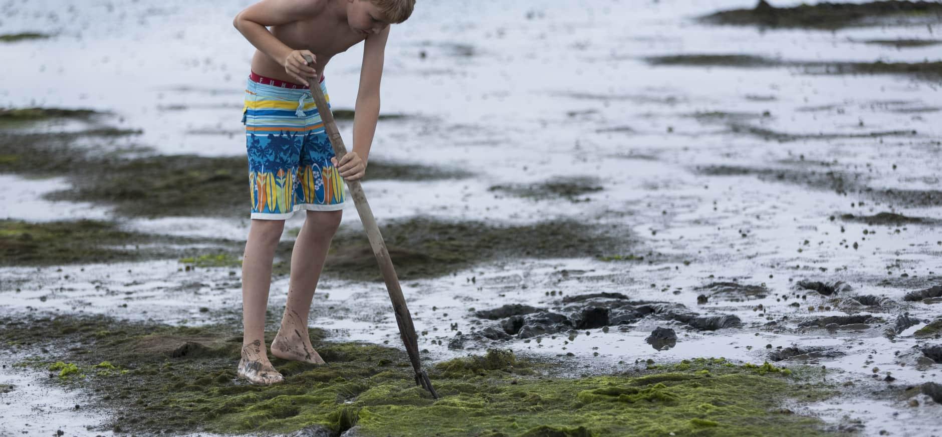 Bouw een dijk op het strand
