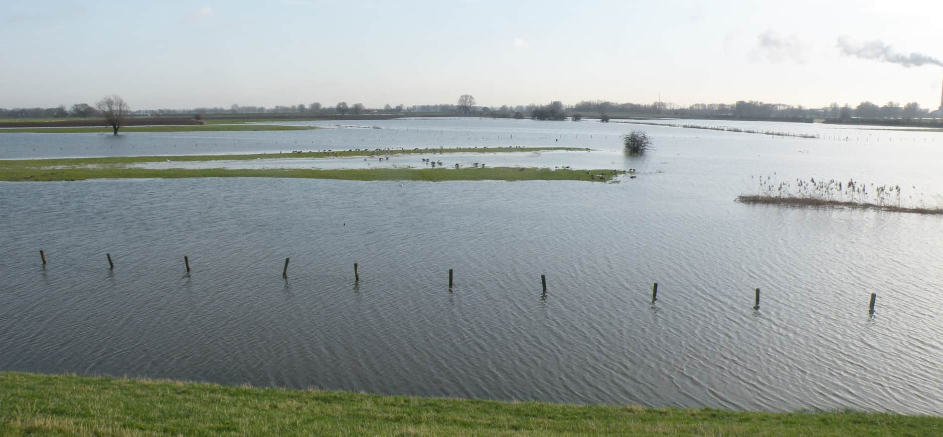 rivierklimaatpark IJsselpoort