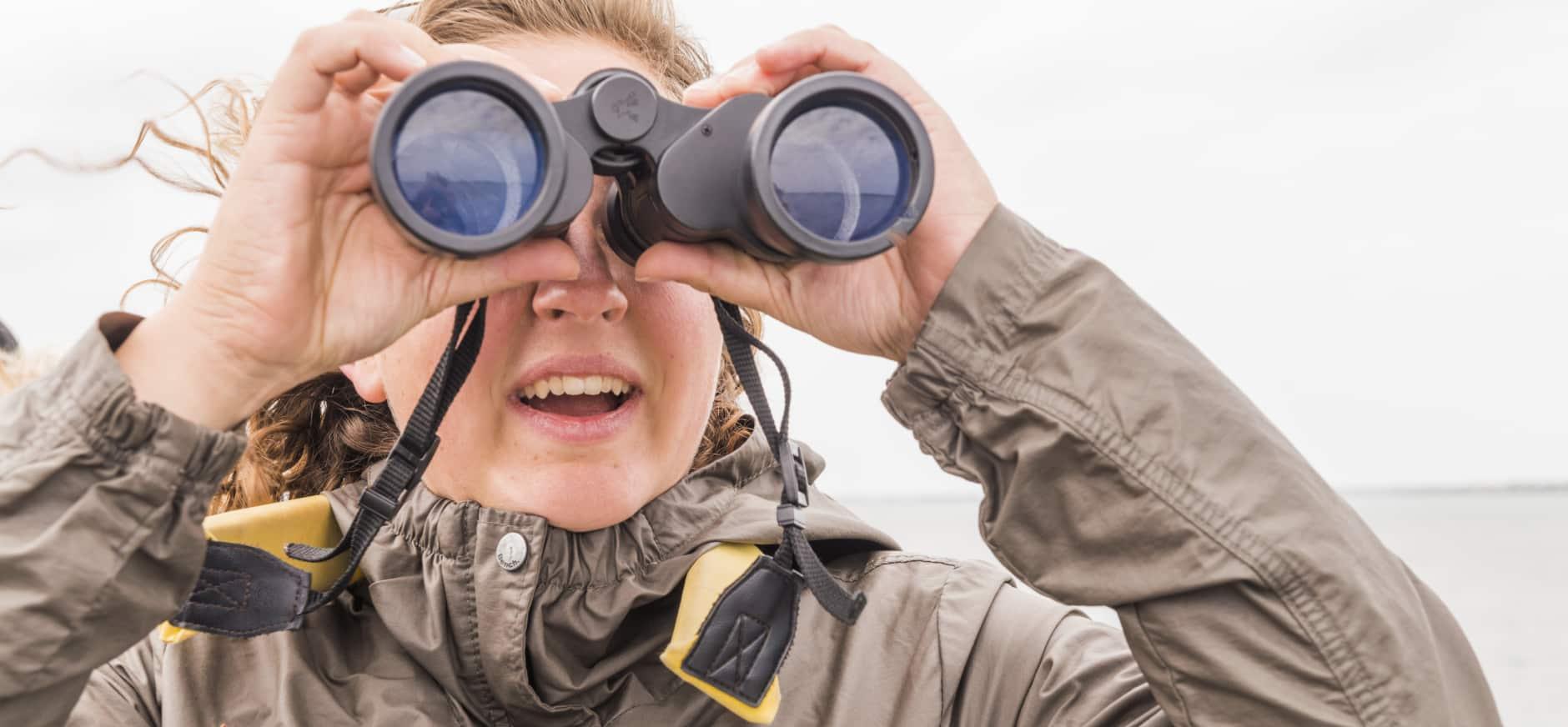 Vogels kijken Naardermeer