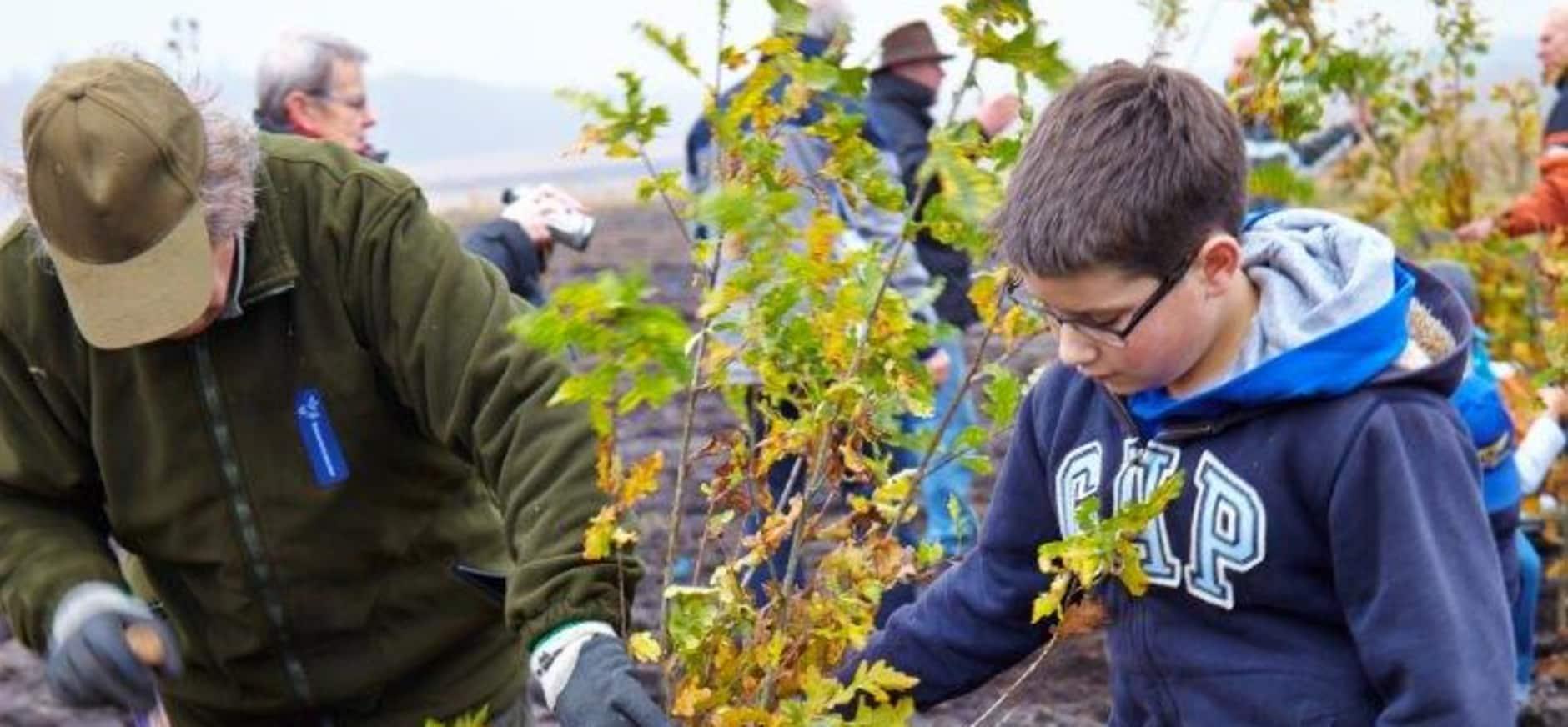 Kinderen planten bomen op Visdonk