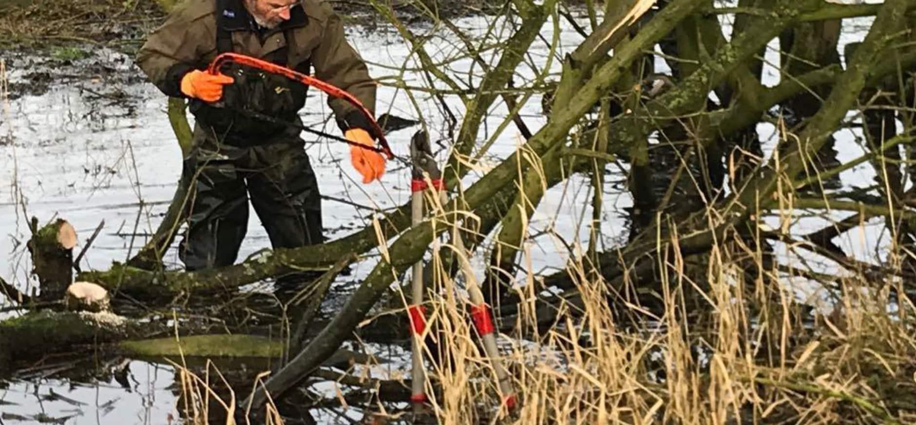 vrijwilligers zagen bomen op De Klencke