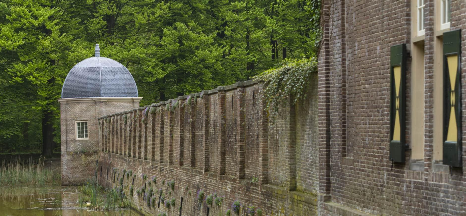 aubrietia kasteelmuren Eerde