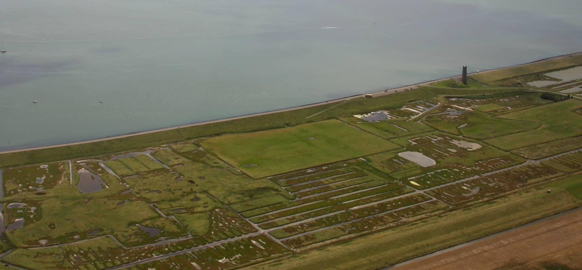 De Roggenplaat en de binnendijkse natuurgebieden in Plan Tureluur hebben een belangrijke wisselwerking