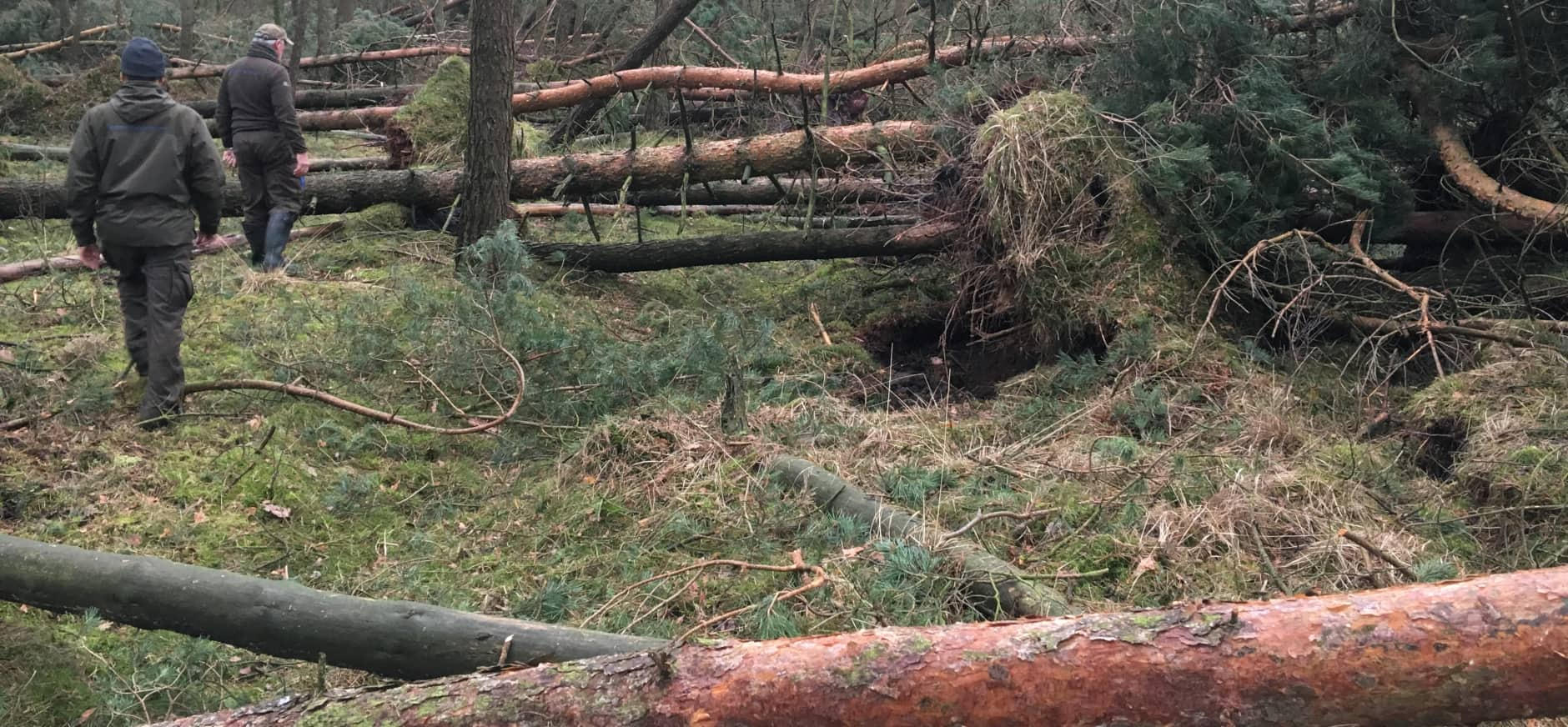 storm De Sprengenberg 2018