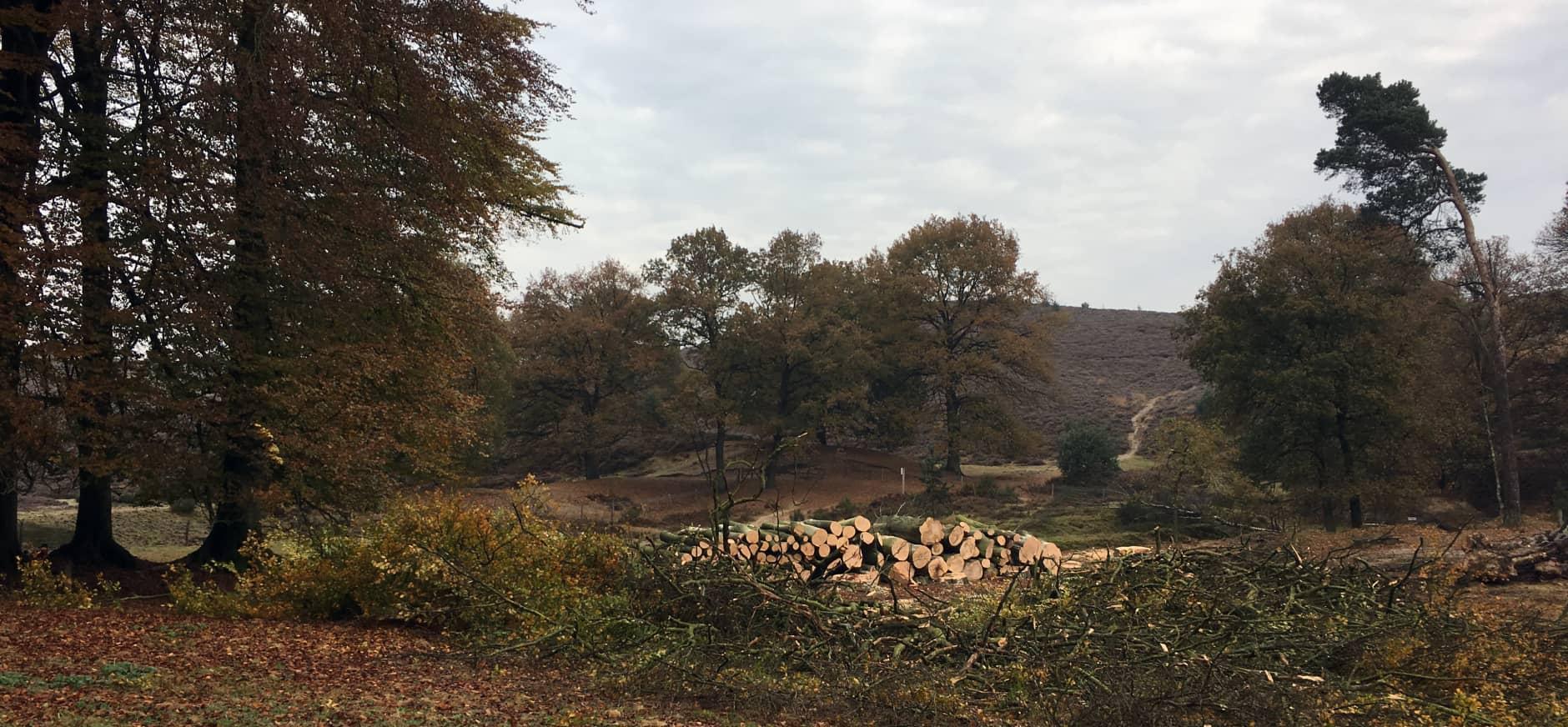 Werkzaamheden landgoed Heuven, Veluwezoom