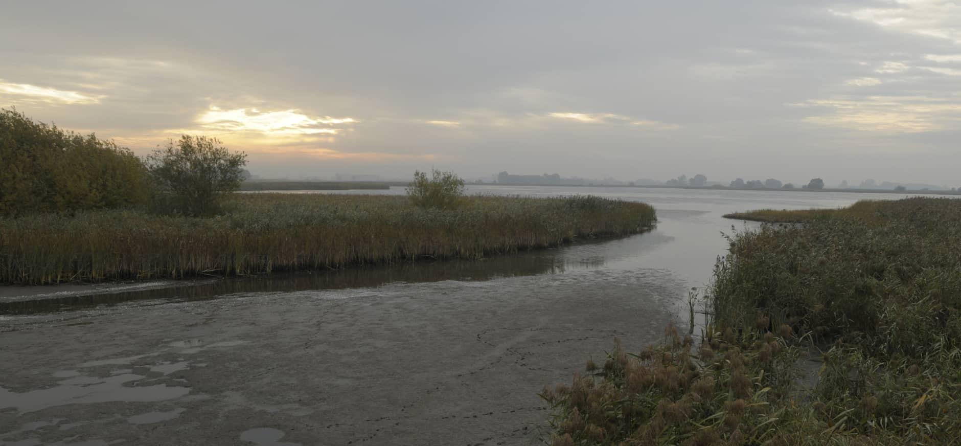 Privé-vaartocht Vogeleiland