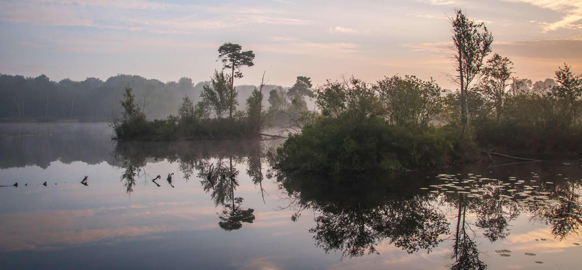 Groepsuitje in de Brabantse natuur