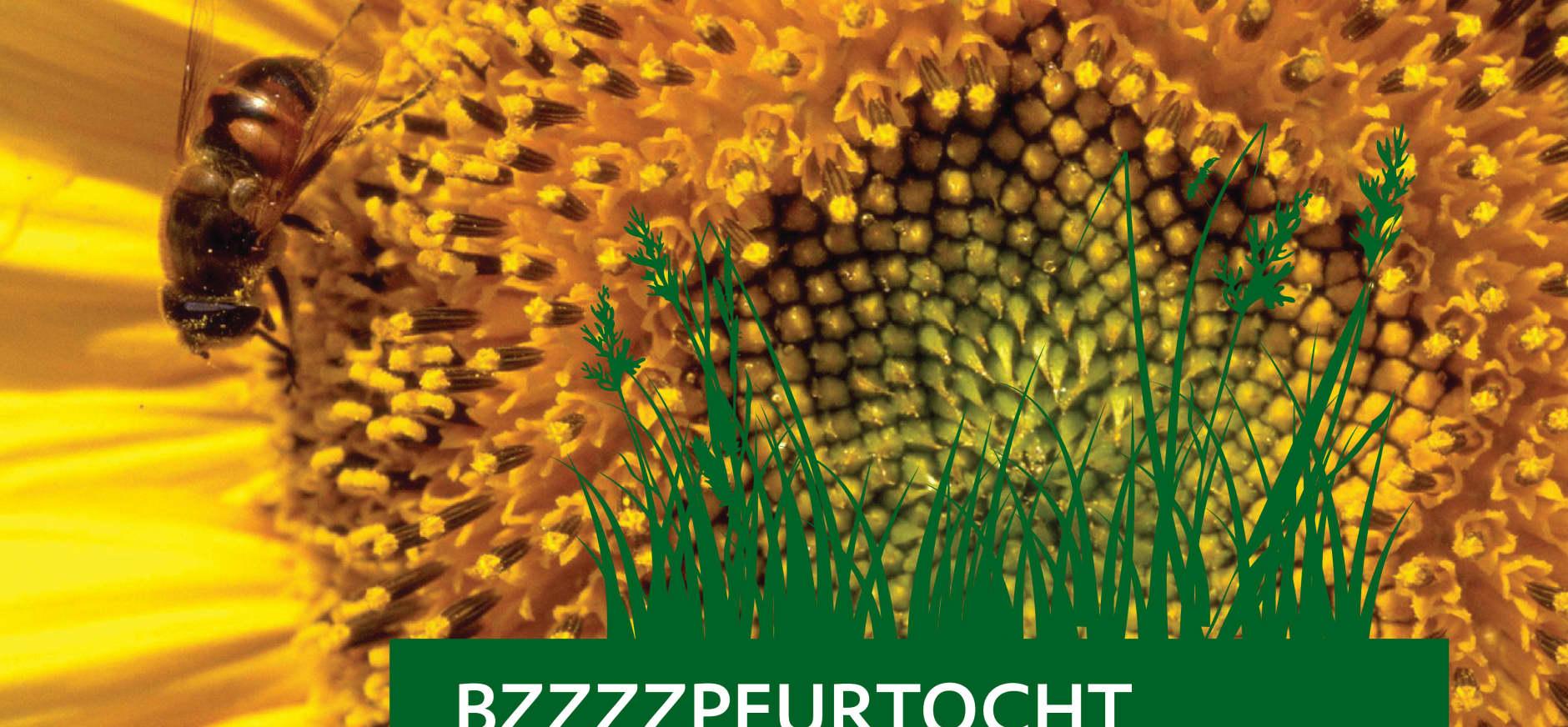 Bzzzzpeurtocht Brunssummerheide