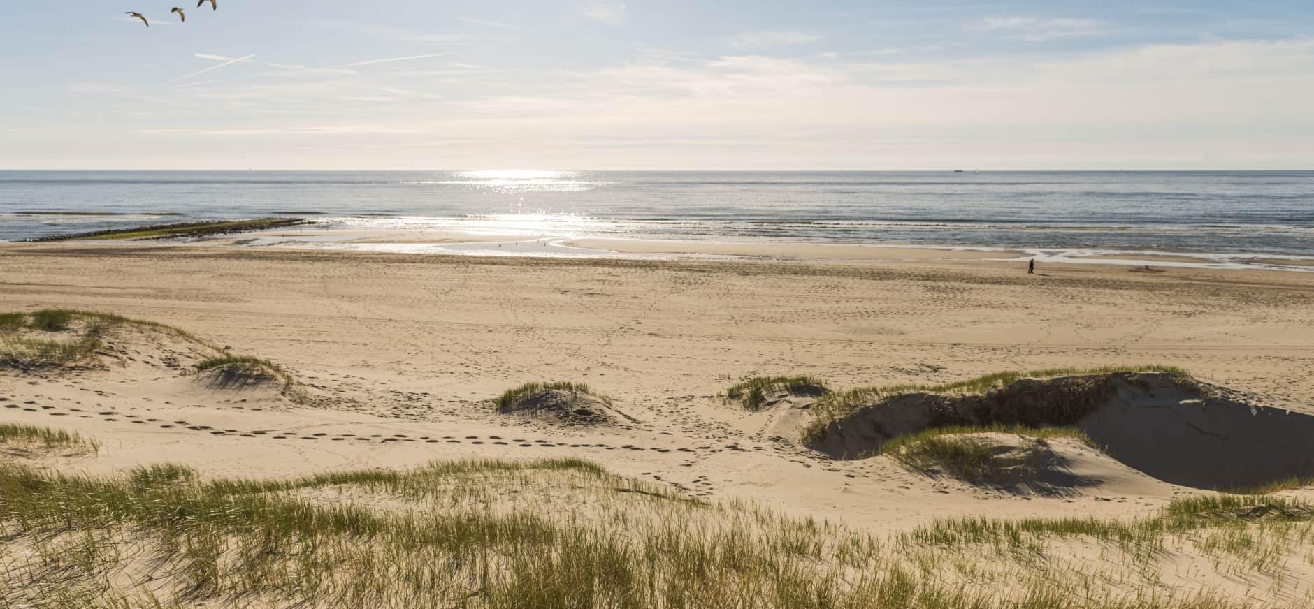 Bescherm de kust