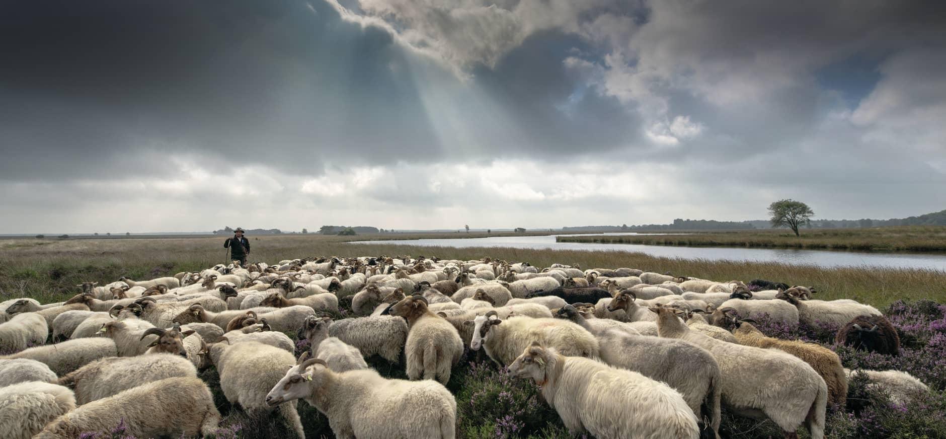 Ledencommissie Drenthe