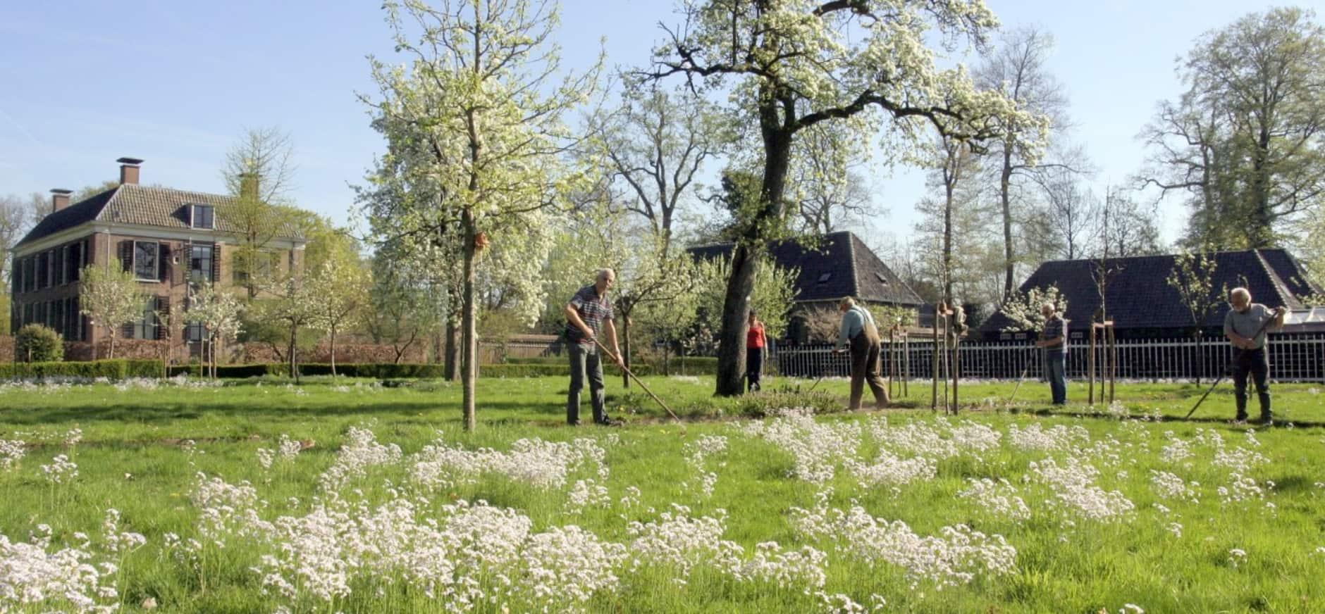 Vrijwilligers gezocht voor mooi werk in moestuin en boomgaard