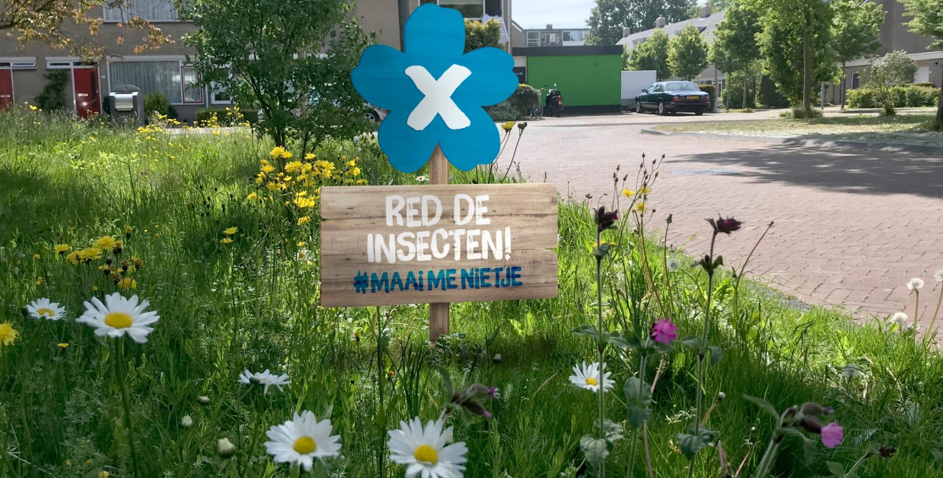 300 kom in actie - insectenpetitie - achterplaat
