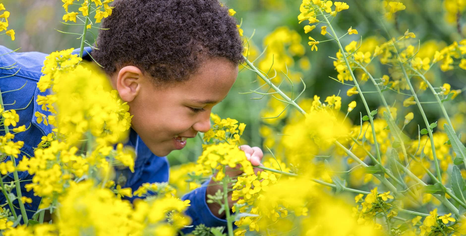 Kind tussen bloemen