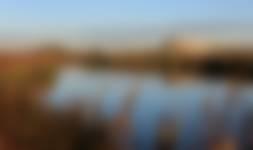 Uitzicht op kijkhut Korendijkse Slikken