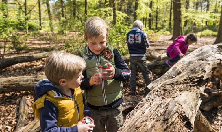 OERRR Bossafari met de boswachter in s-Graveland