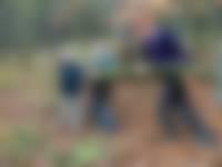 Boswachters zoeken mensen met een groen hart